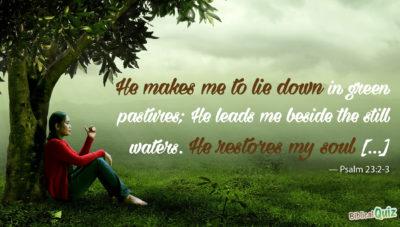 Psalm 23.2-3