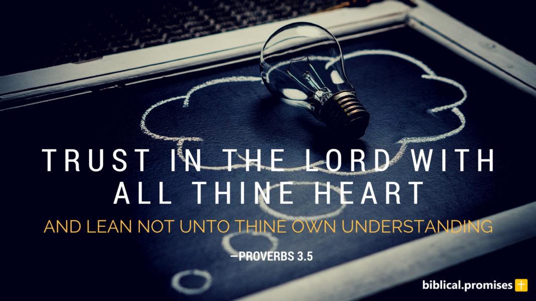 Proverbs 3.5
