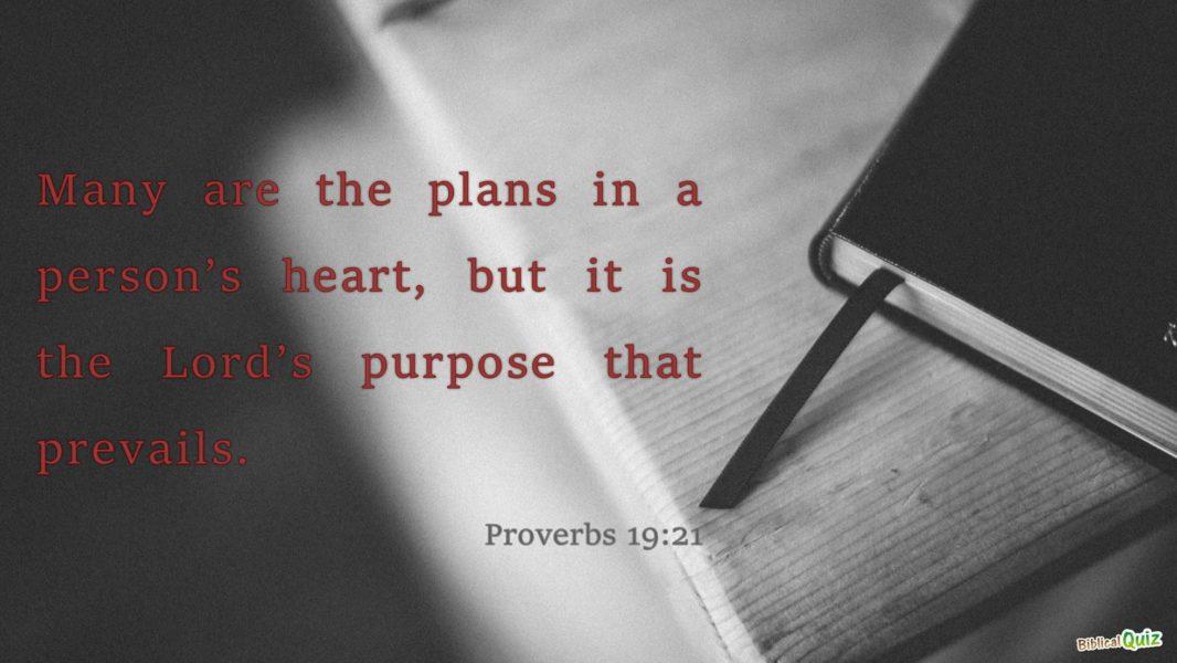 Proverbs 19.21