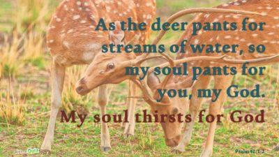 Psalm 42.1-2