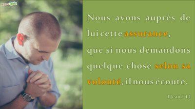 1 Jean 5.14