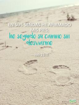Job 23.11