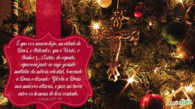 Lucas 2.11-14