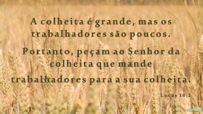 Lucas 10.2