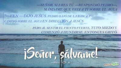 Mateo 14.28-30