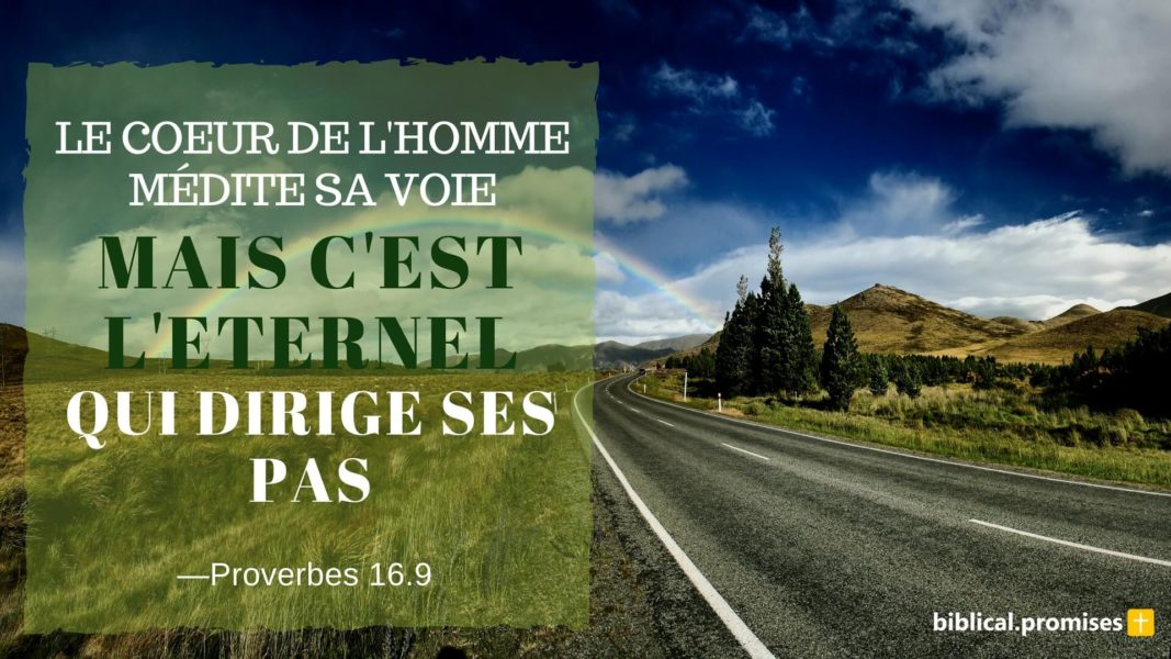 Proverbes 16.9