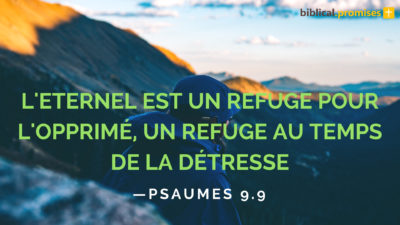 Psaumes 9.9