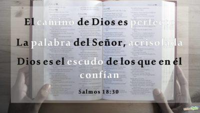 Salmos 18.30